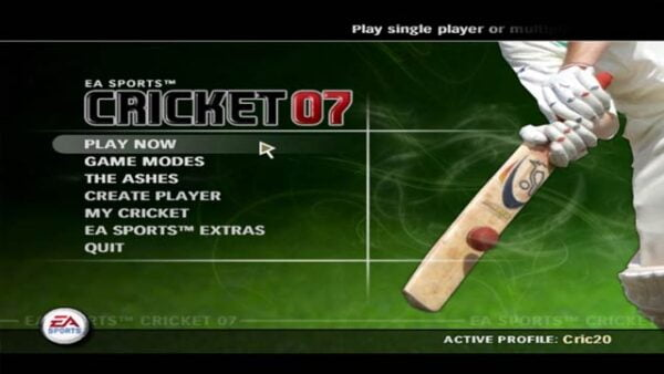 Cricket-07-Game-Snap9